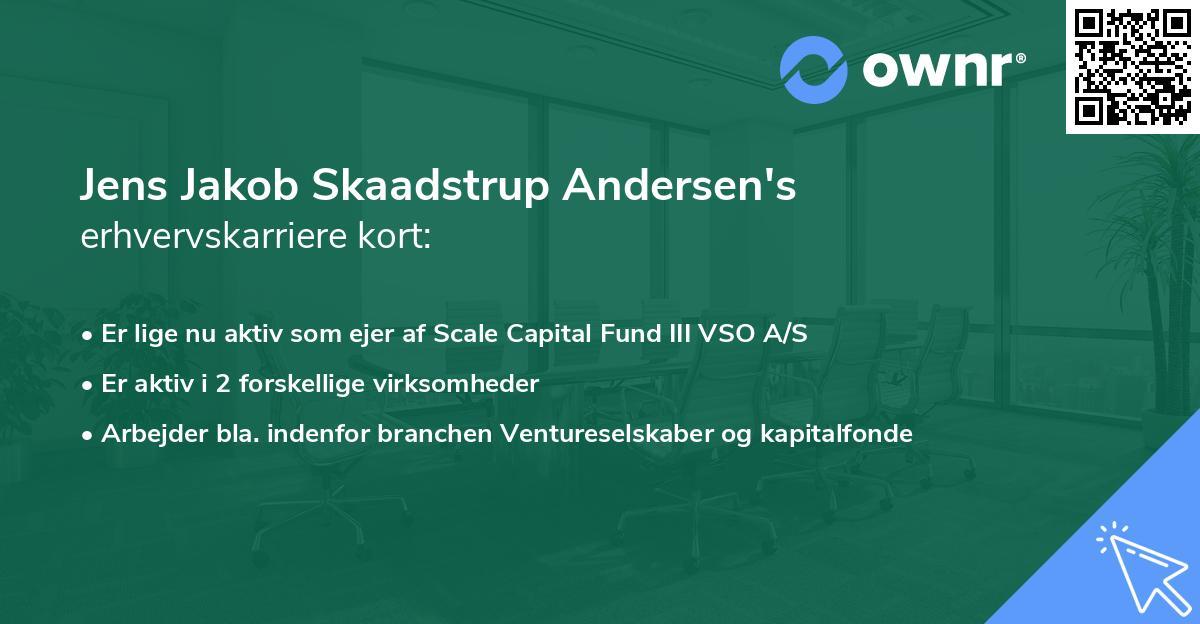 Jens Jakob Skaadstrup Andersen's erhvervskarriere kort