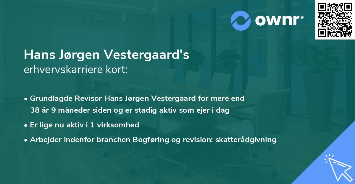 Hans Jørgen Vestergaard's erhvervskarriere kort