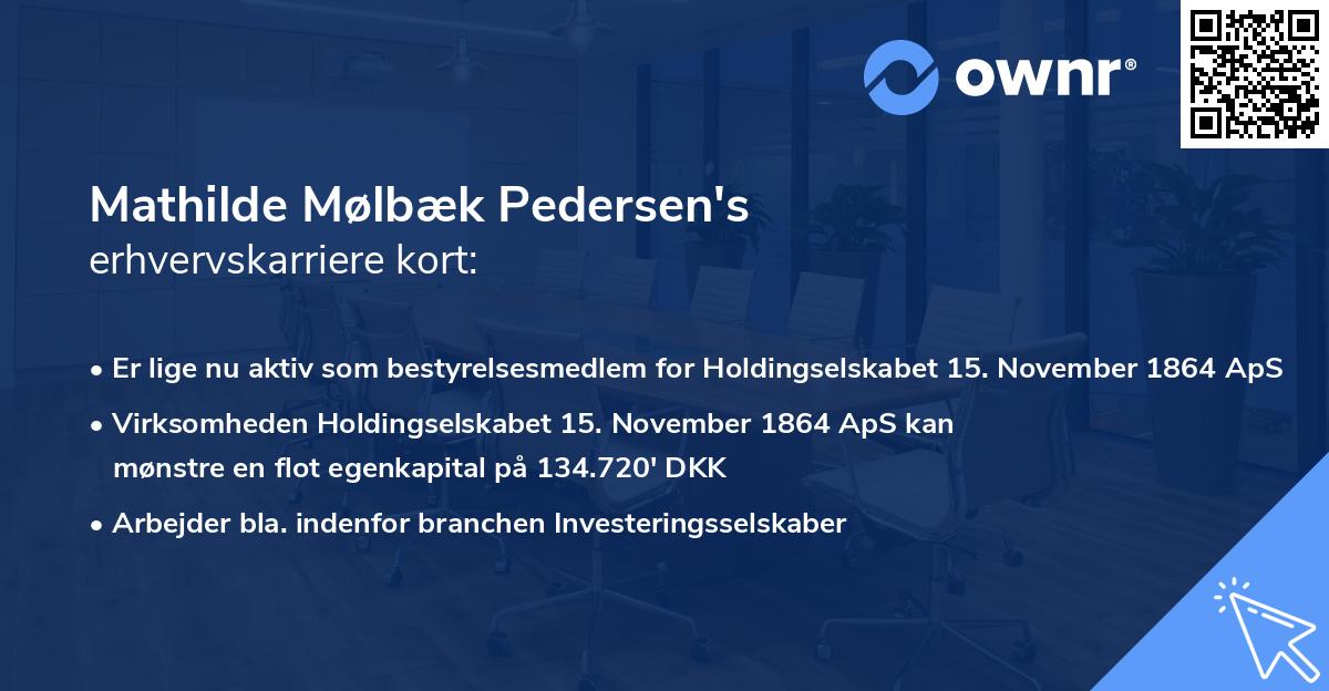 Mathilde Mølbæk Pedersen's erhvervskarriere kort