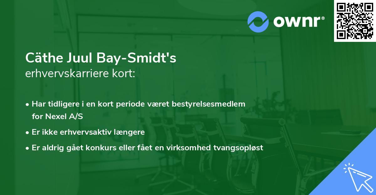 Cäthe Juul Bay-Smidt's erhvervskarriere kort