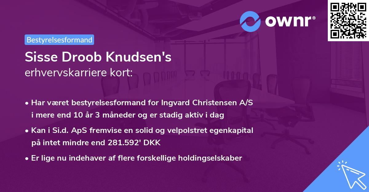 Sisse Droob Knudsen's erhvervskarriere kort