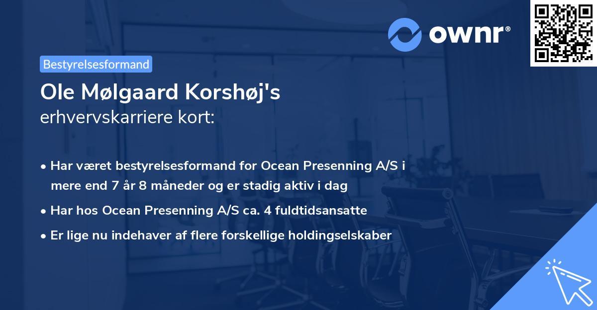 Ole Mølgaard Korshøj's erhvervskarriere kort