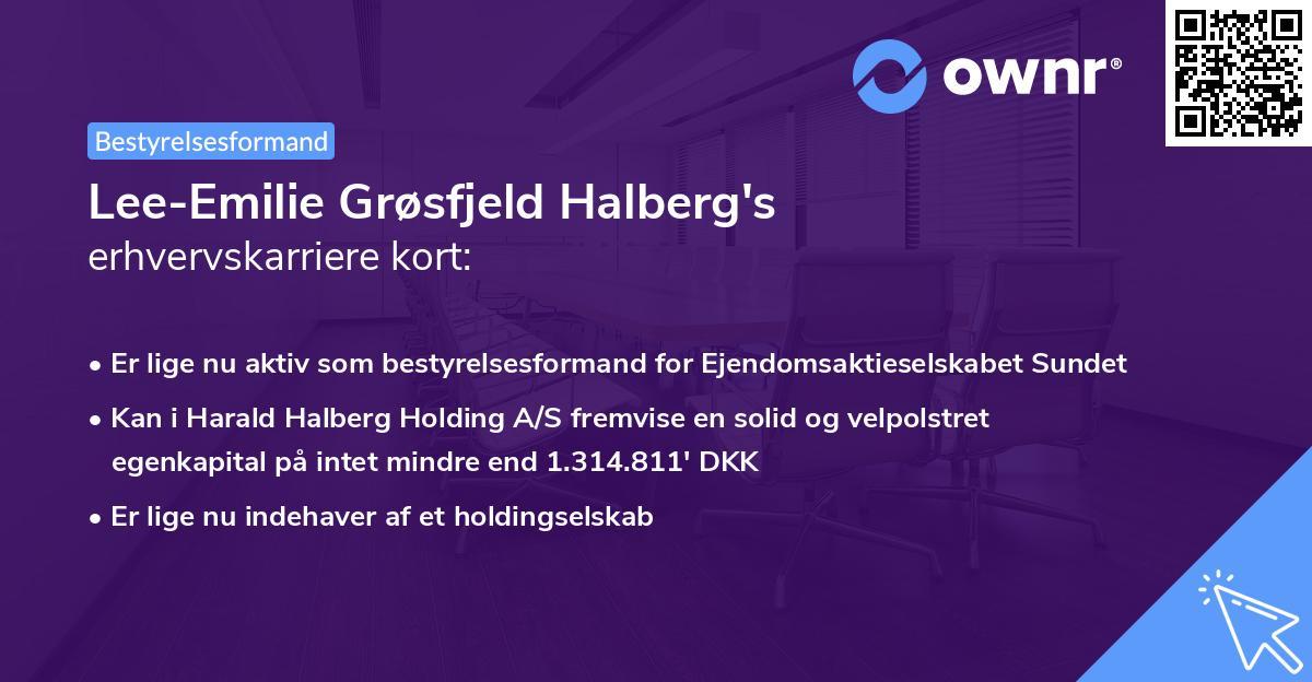 Lee-Emilie Grøsfjeld Halberg's erhvervskarriere kort