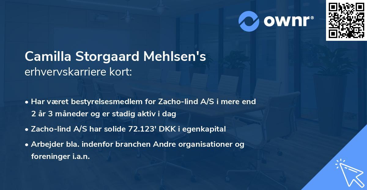 Camilla Storgaard Mehlsen's erhvervskarriere kort