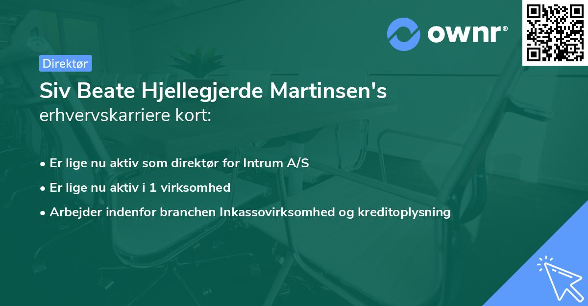 Siv Beate Hjellegjerde Martinsen's erhvervskarriere kort