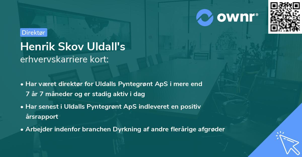 Henrik Skov Uldall's erhvervskarriere kort