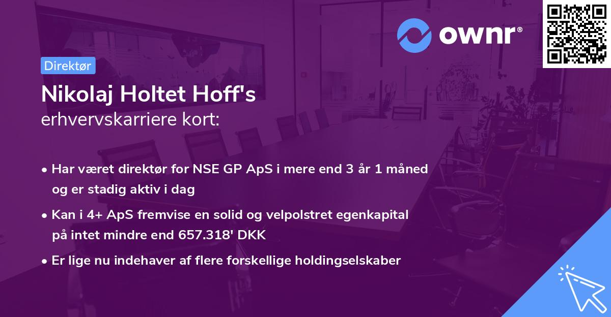 Nikolaj Holtet Hoff's erhvervskarriere kort