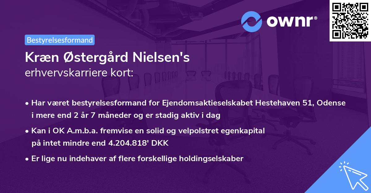 Kræn Østergård Nielsen's erhvervskarriere kort