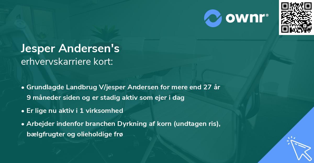 Jesper Andersen's erhvervskarriere kort