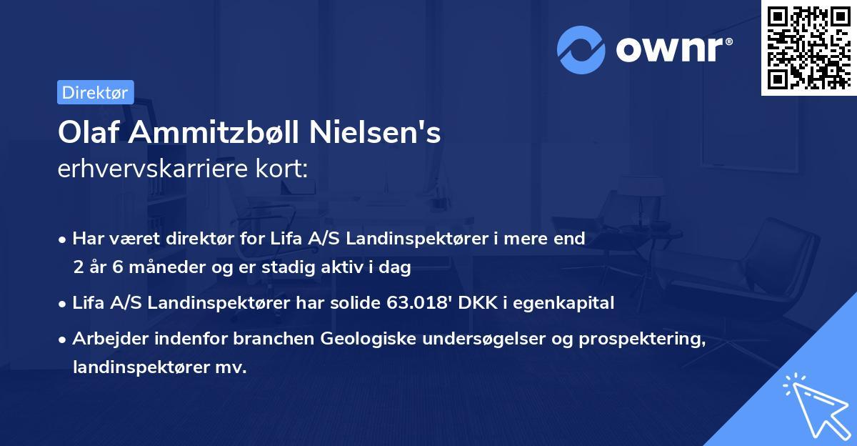 Olaf Ammitzbøll Nielsen's erhvervskarriere kort