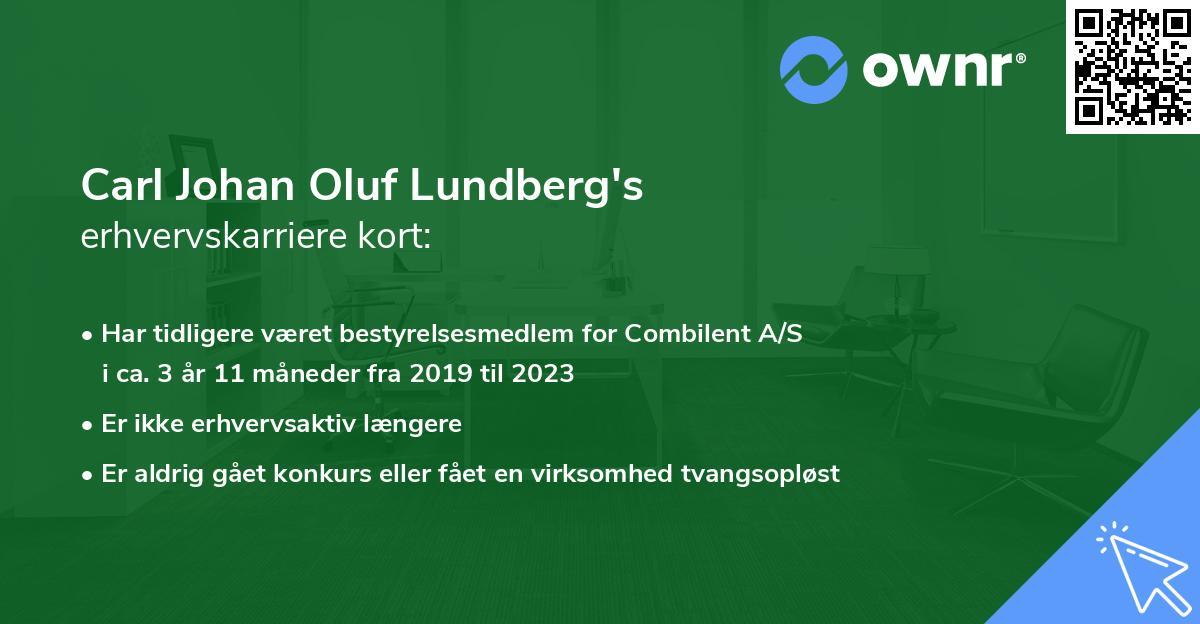 Carl Johan Olof Lundberg's erhvervskarriere kort