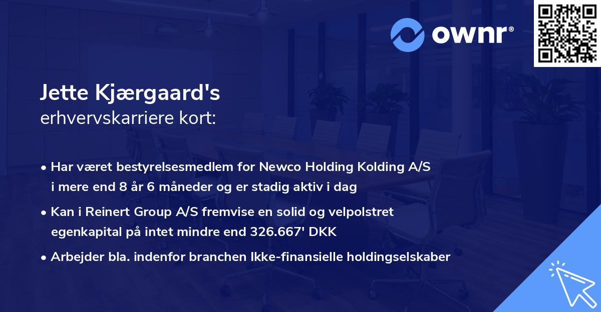 Jette Kjærgaard's erhvervskarriere kort