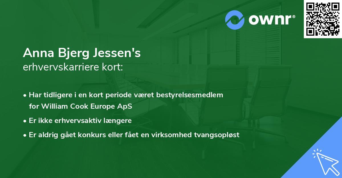 Anna Bjerg Jessen's erhvervskarriere kort