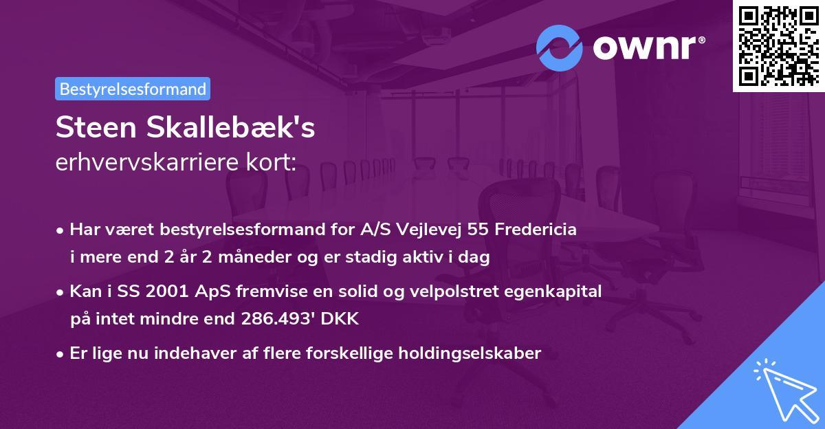 Steen Skallebæk's erhvervskarriere kort