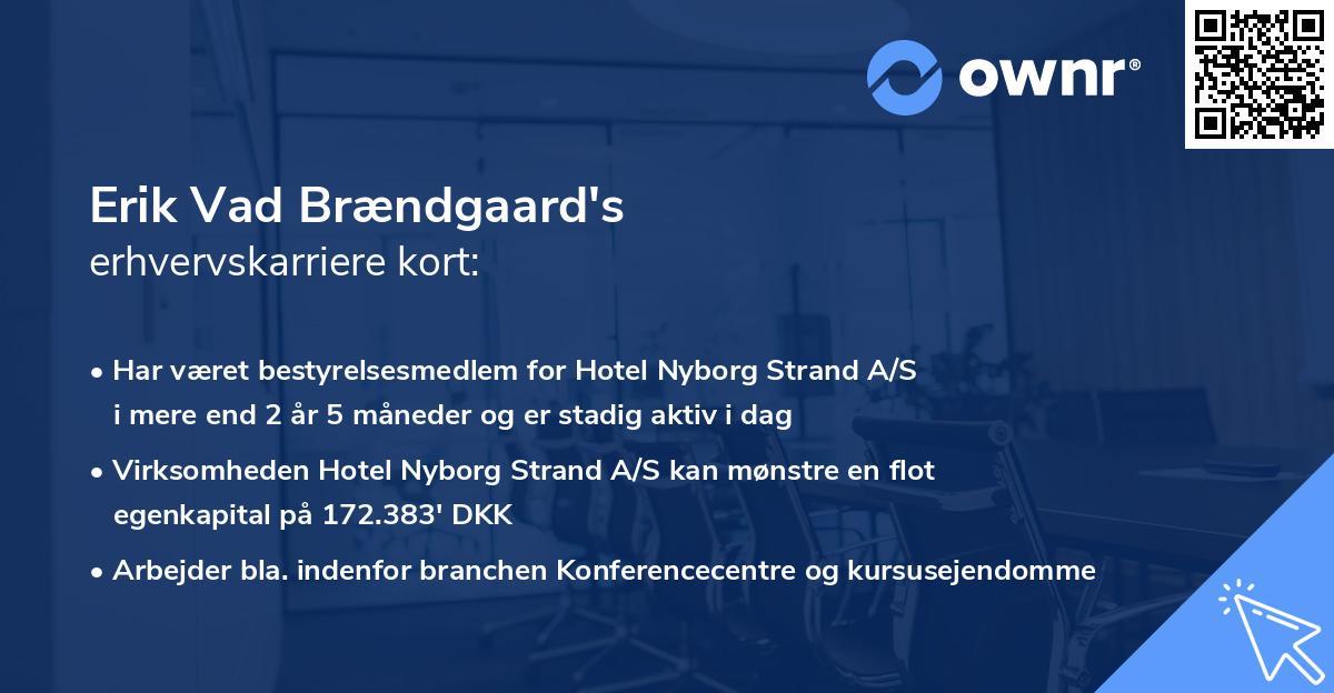 Erik Vad Brændgaard's erhvervskarriere kort