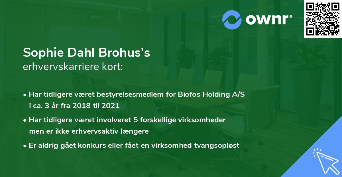 Sophie Dahl Brohus's erhvervskarriere kort