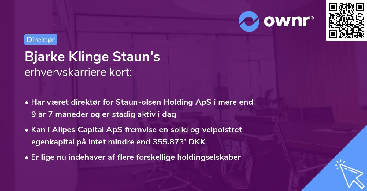 Bjarke Klinge Staun's erhvervskarriere kort