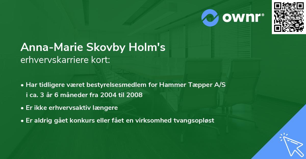Anna-Marie Skovby Holm's erhvervskarriere kort