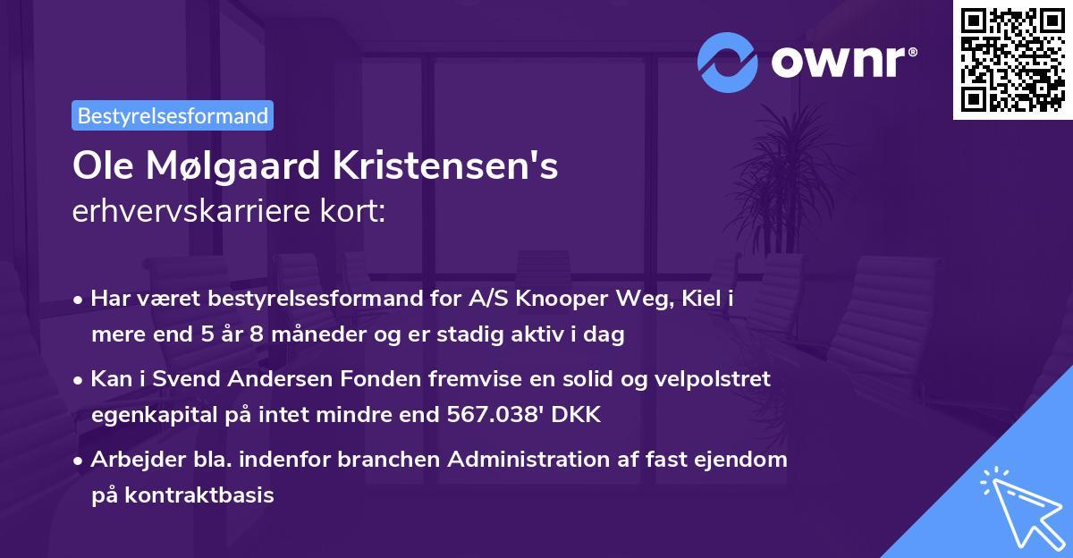 Ole Mølgaard Kristensen's erhvervskarriere kort