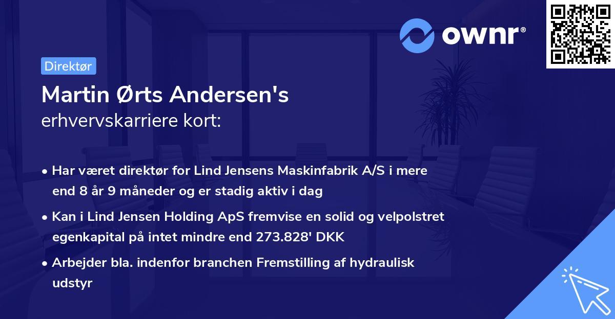 Martin Ørts Andersen's erhvervskarriere kort