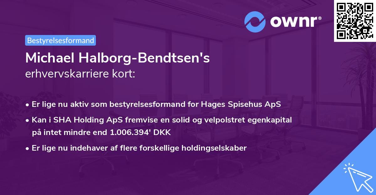 Michael Halborg-Bendtsen's erhvervskarriere kort