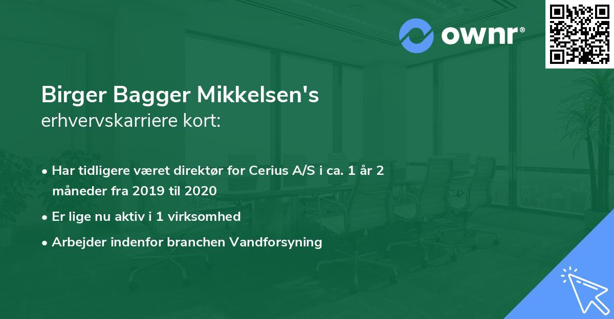 Birger Bagger Mikkelsen's erhvervskarriere kort