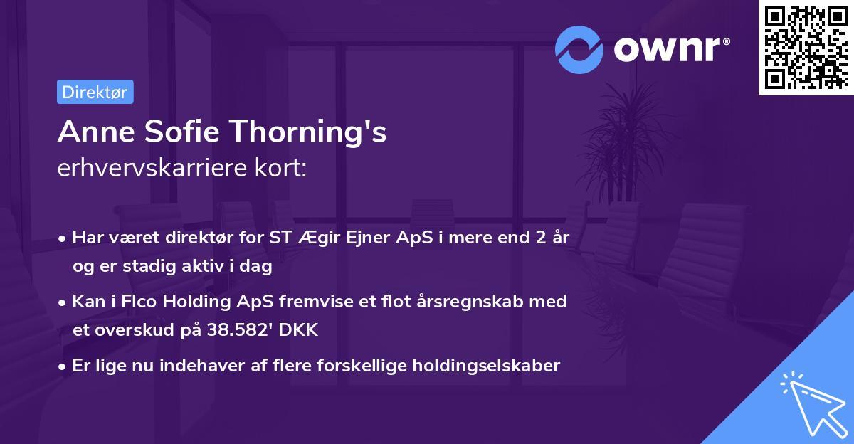 Anne Sofie Thorning's erhvervskarriere kort
