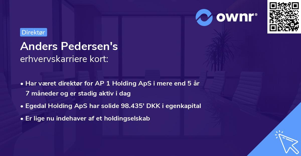 Anders Pedersen's erhvervskarriere kort