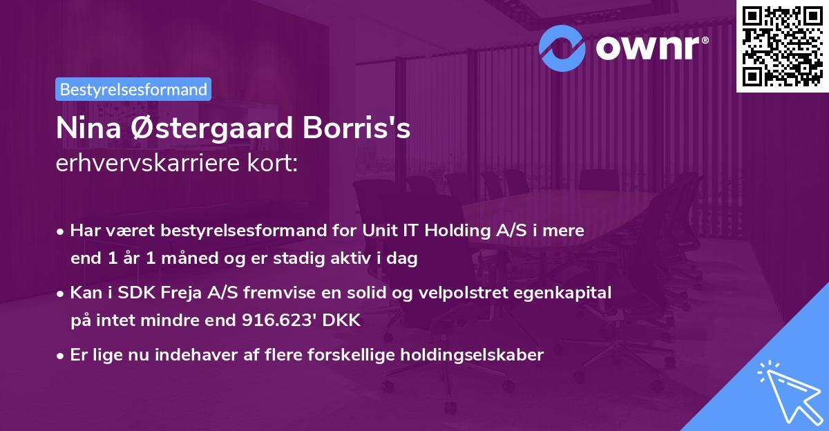 Nina Østergaard Borris's erhvervskarriere kort