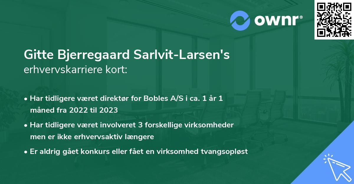 Gitte Bjerregaard Sarlvit-Larsen's erhvervskarriere kort