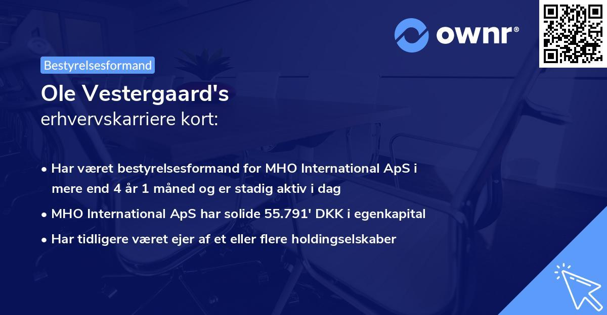 Ole Vestergaard's erhvervskarriere kort