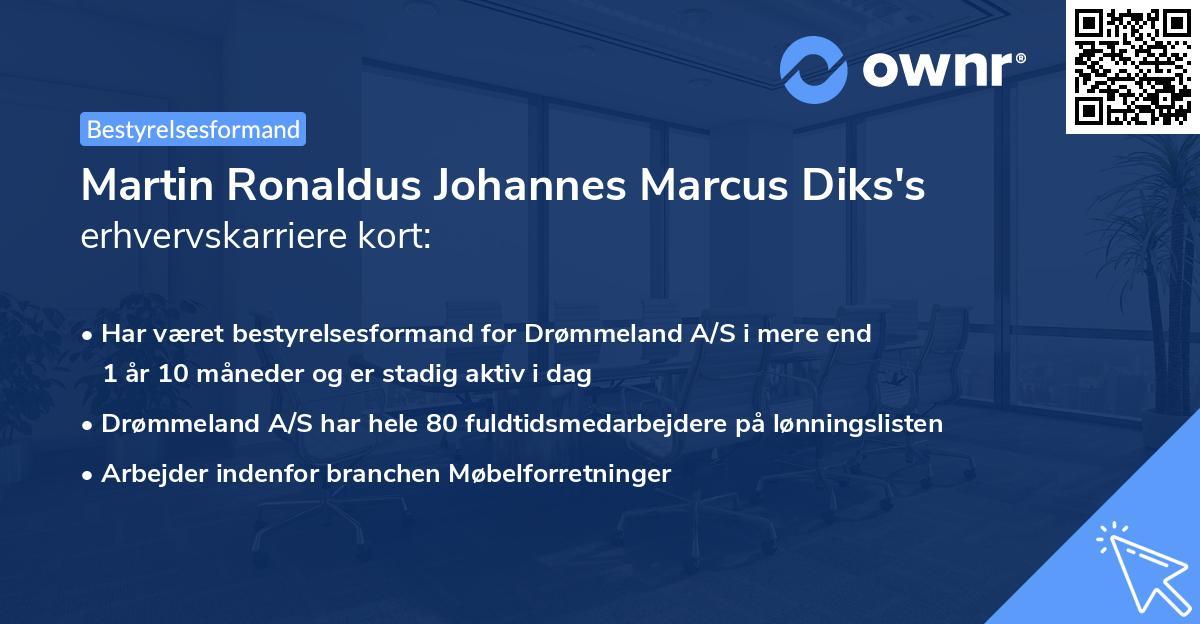 Martin Ronaldus Johannes Marcus Diks's erhvervskarriere kort
