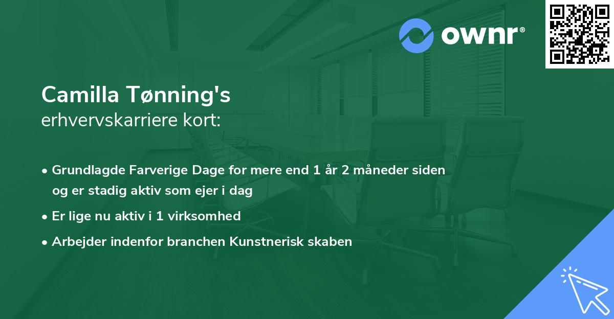 Camilla Tønning's erhvervskarriere kort