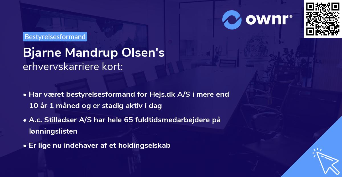 Bjarne Mandrup Olsen's erhvervskarriere kort