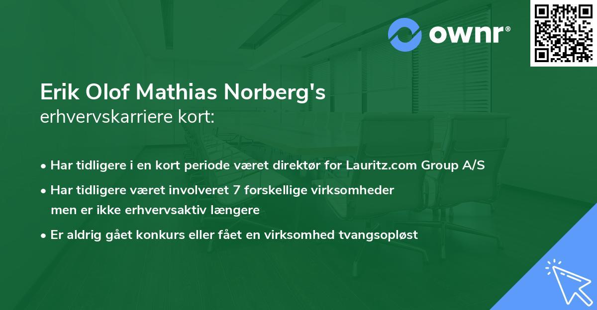 Erik Olof Mathias Norberg's erhvervskarriere kort
