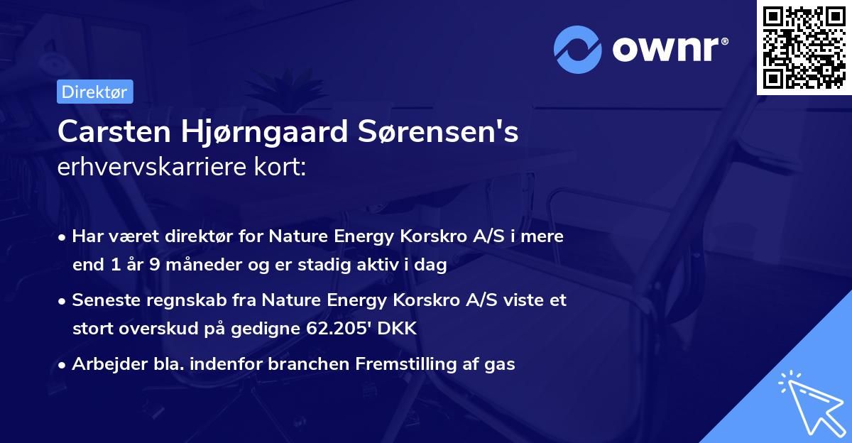 Carsten Hjørngaard Sørensen's erhvervskarriere kort