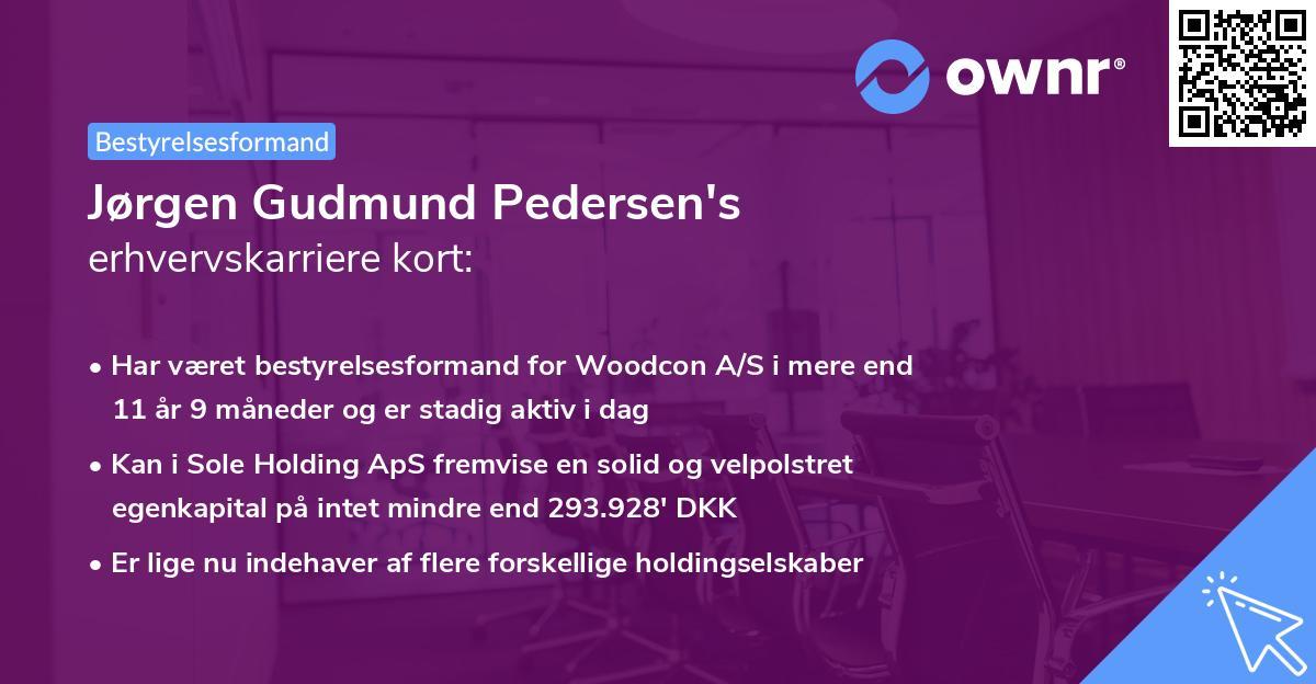 Jørgen Gudmund Pedersen's erhvervskarriere kort