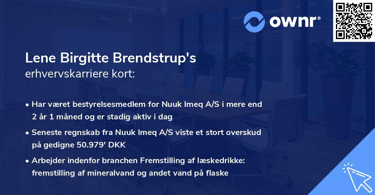 Lene Birgitte Brendstrup's erhvervskarriere kort
