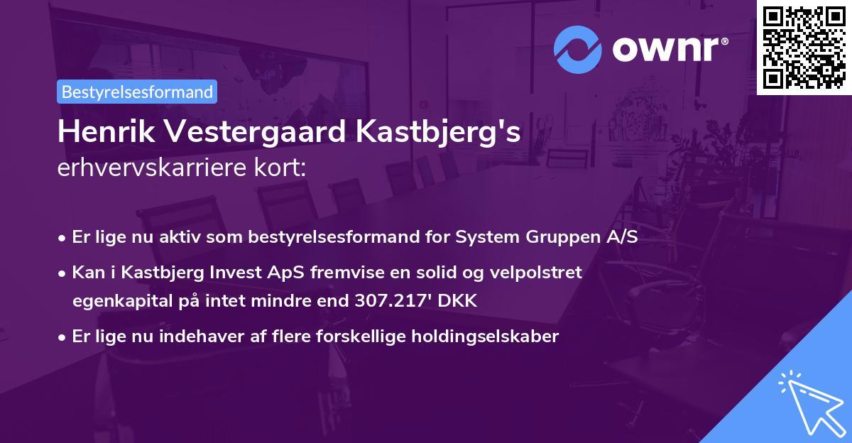 Henrik Vestergaard Kastbjerg's erhvervskarriere kort
