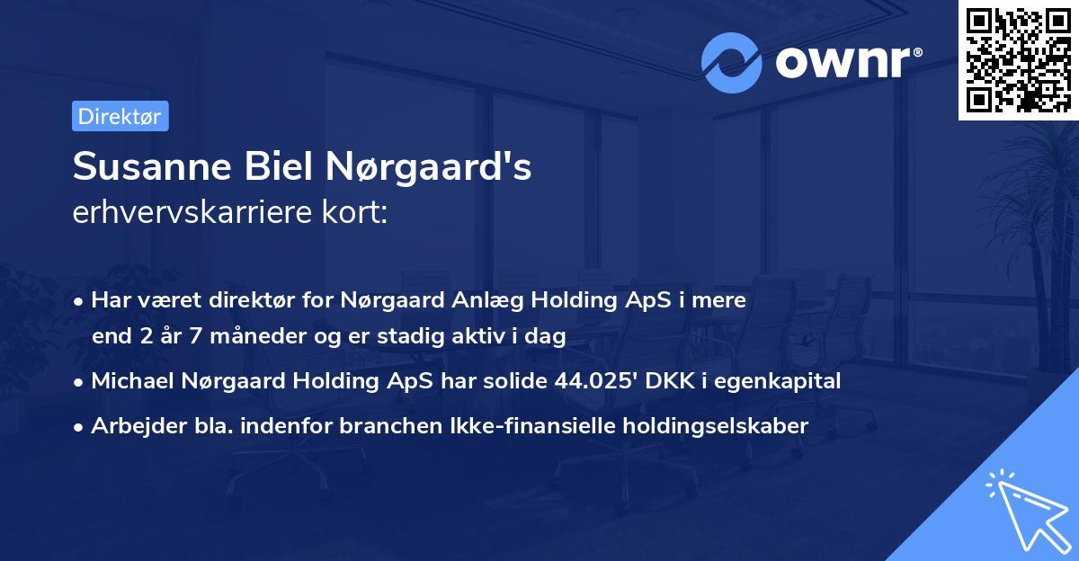 Susanne Biel Nørgaard's erhvervskarriere kort