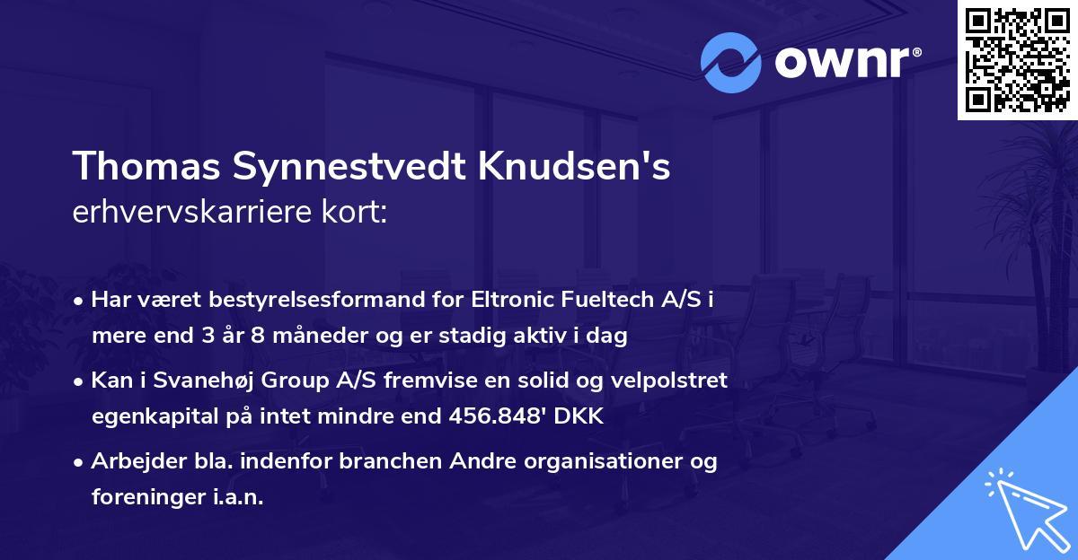 Thomas Synnestvedt Knudsen's erhvervskarriere kort
