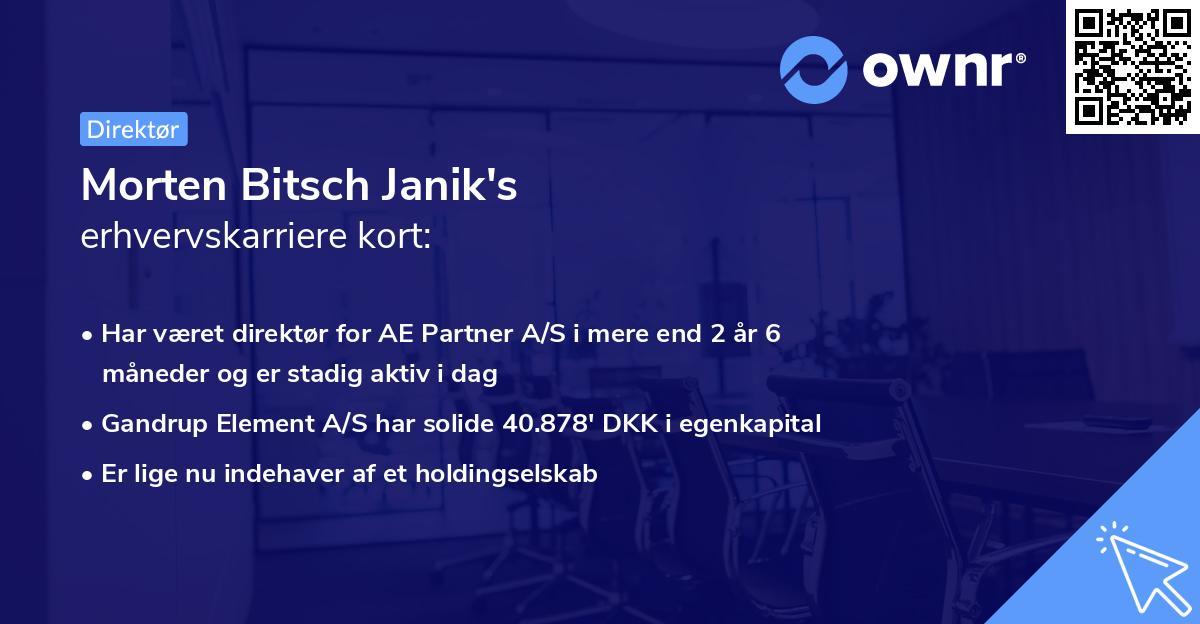 Morten Bitsch Janik's erhvervskarriere kort