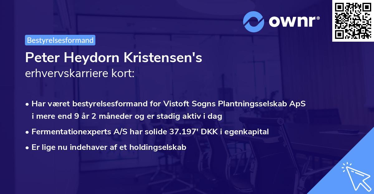 Peter Heydorn Kristensen's erhvervskarriere kort