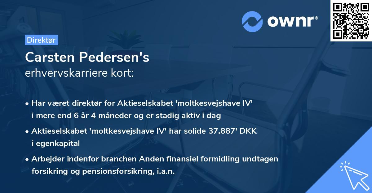 Carsten Pedersen's erhvervskarriere kort