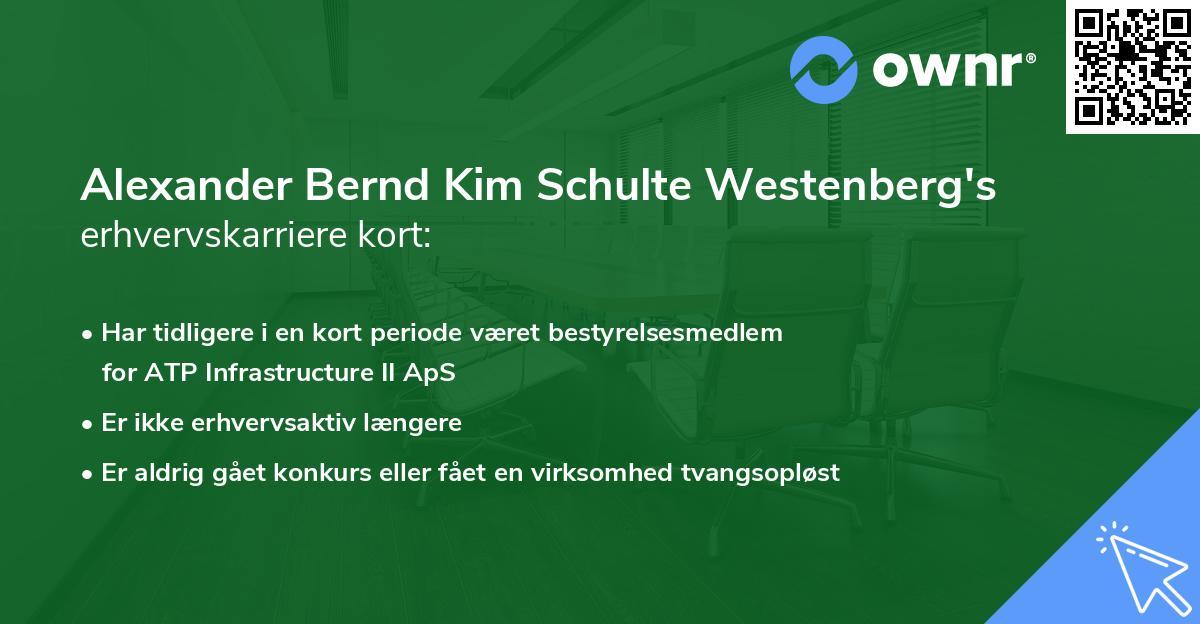 Alexander Bernd Kim Schulte Westenberg's erhvervskarriere kort