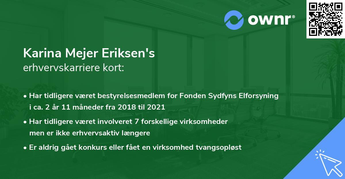 Karina Mejer Eriksen's erhvervskarriere kort