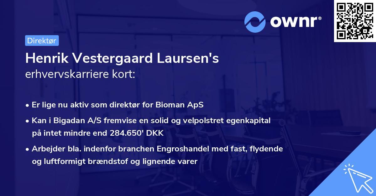 Henrik Vestergaard Laursen's erhvervskarriere kort