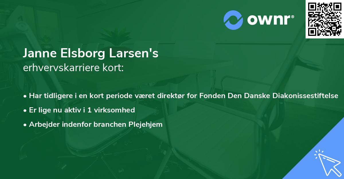 Janne Elsborg Larsen's erhvervskarriere kort