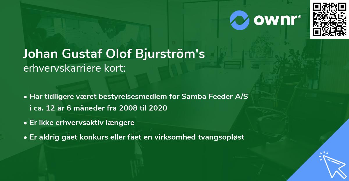 Johan Gustaf Olof Bjurström's erhvervskarriere kort