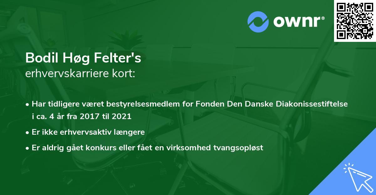 Bodil Høg Felter's erhvervskarriere kort